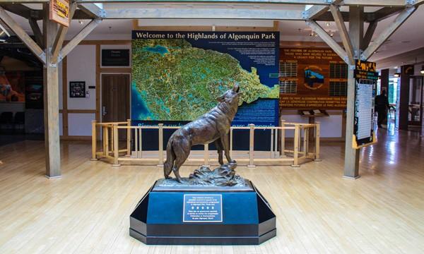 Wolf statue inside Algonquin Park Visitor Centre