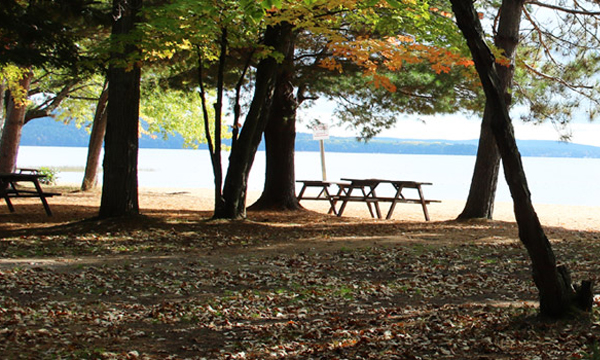 Picnic tables along the shore of Round Lake