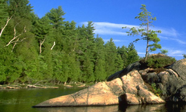 Lake with rock island